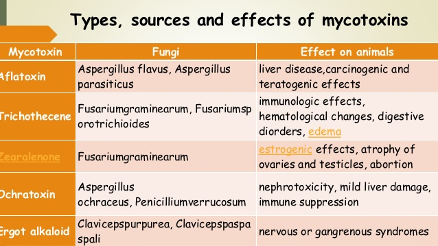 Mycotoxins: types, effects and fungi  aflatoxins, ochratoxin A, patulin, fumonisins, zearalenone and nivalenol